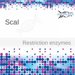 Scai restriction endonuclease