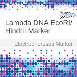 simple_biotech_showcase_ (3)