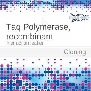 Thermus Aquaticus DNA Polymerase