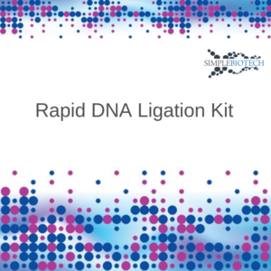 Quick Ligation Kit Simplebiotech Schnellligations Kit