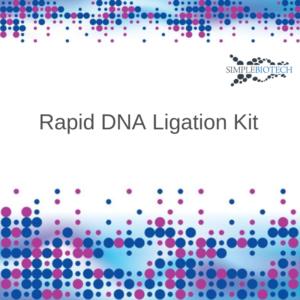 Quick Ligation Kit Simplebiotech Schnellligations Kit